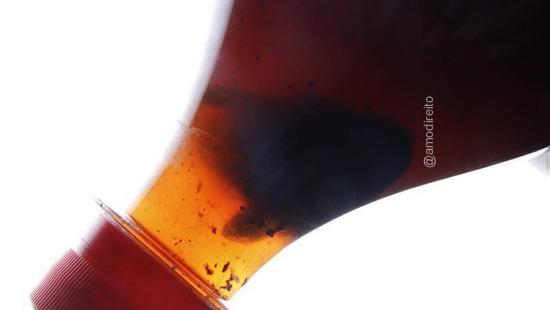 Nojeira: Consumidora será indenizada ao pagamento de R$ 5 mil por barata em Coca-Cola